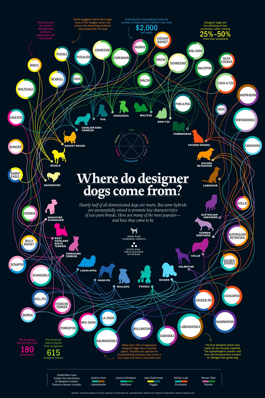 Perros de diseño