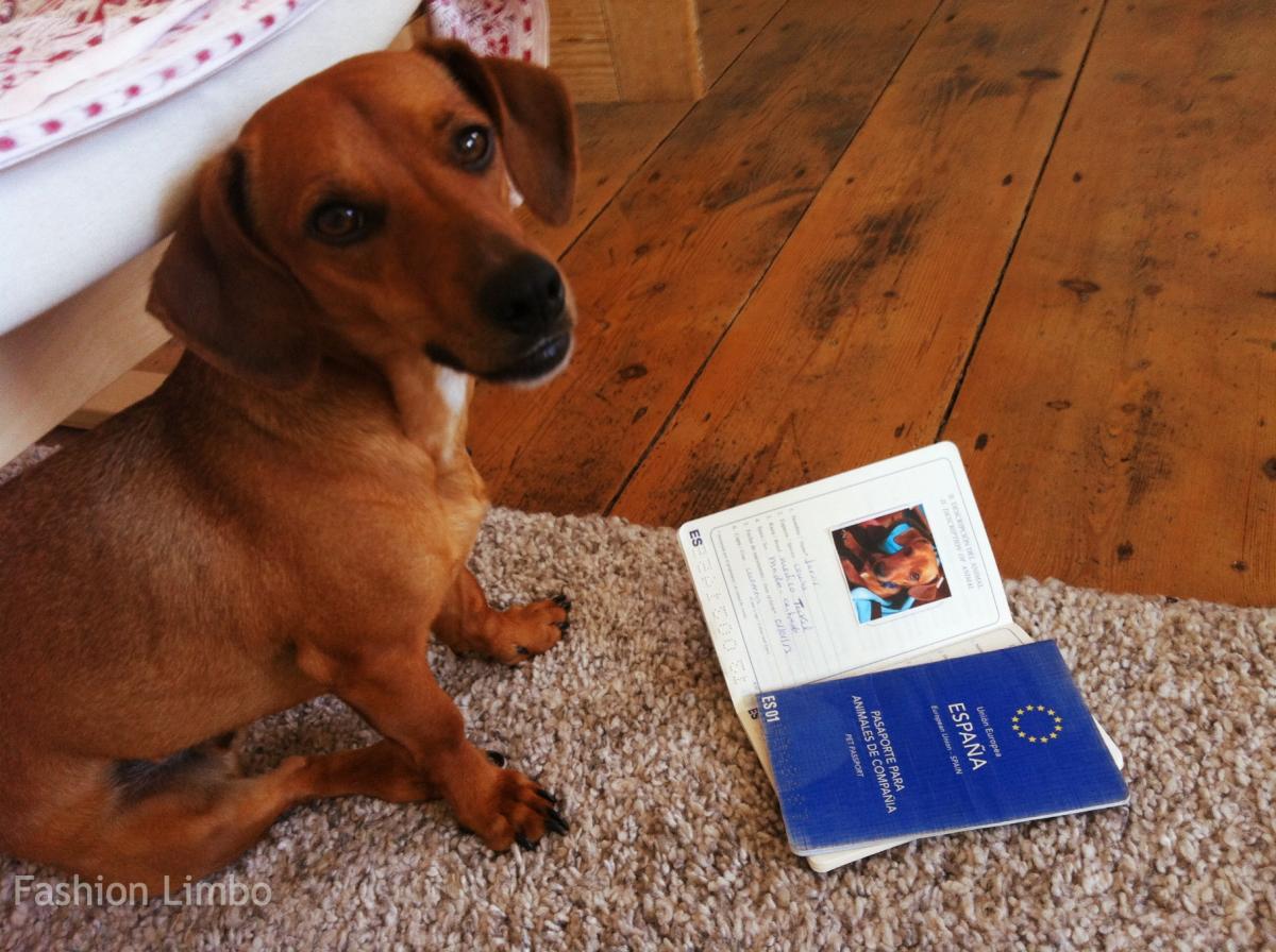 Jarvis y su pasaporte