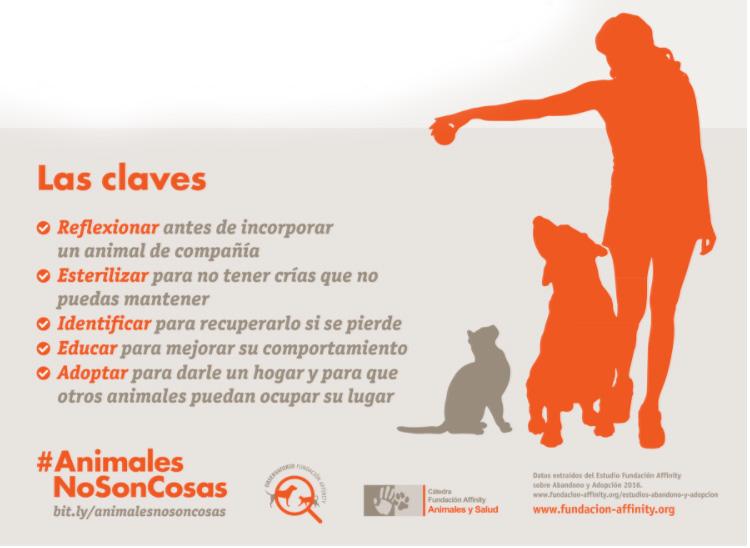 Claves del buen trato a los animales