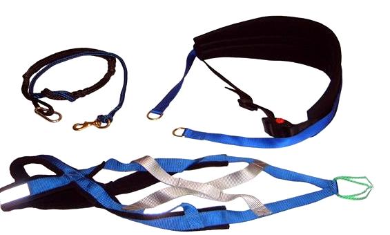 canicross accesorios